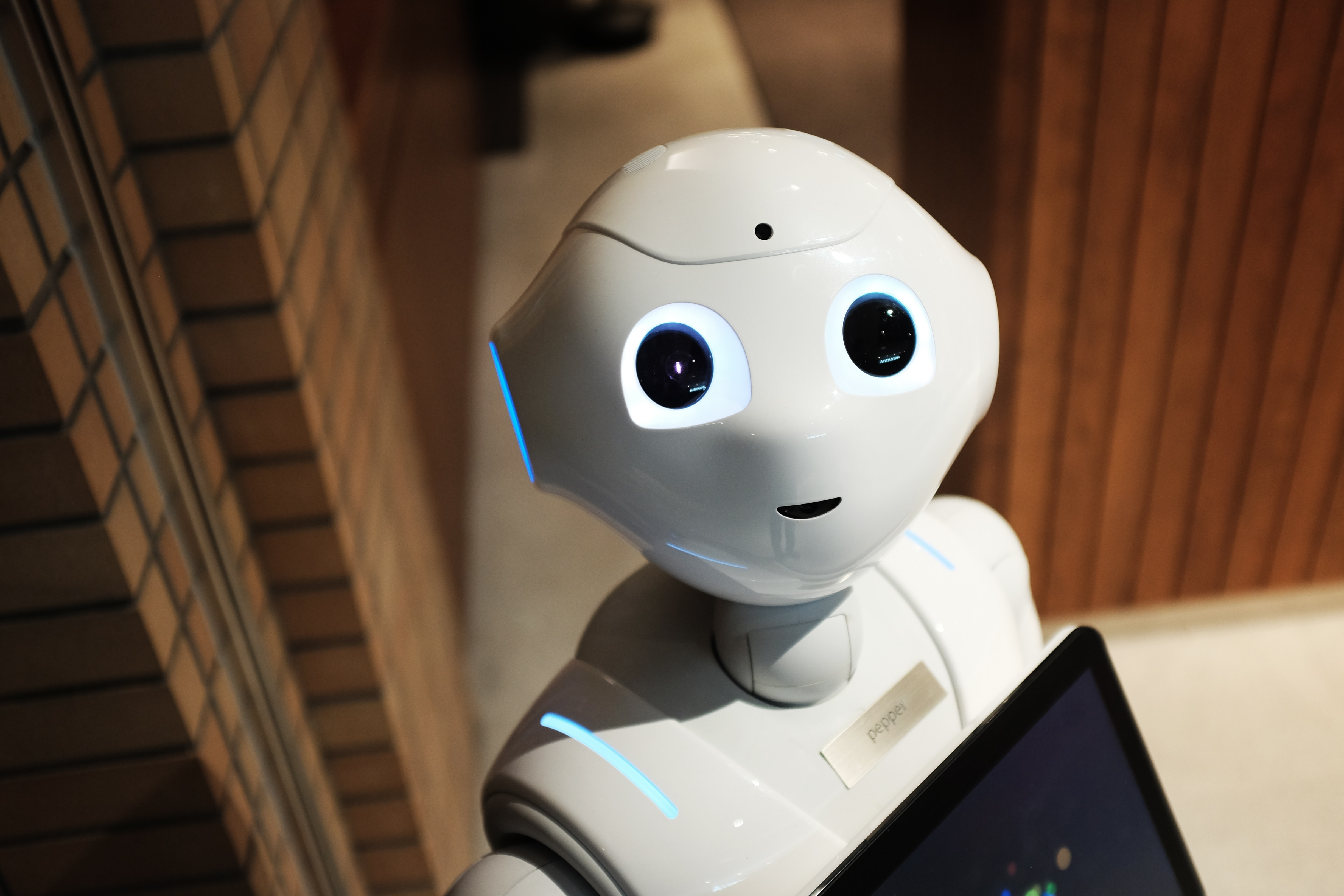 A Small Business Primer: How Do RPA Bots Work?